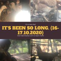 EPISOD 3 – It's been so long. (16-17.10.2020)
